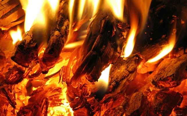 Какими дровами нельзя топить печь
